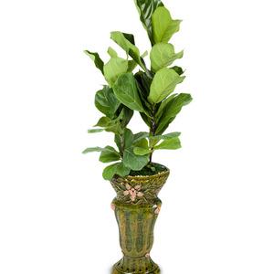 떡갈고무나무(마블)